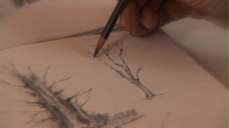 Sketching-Winter-Trees