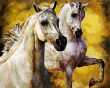 white horses in golden light