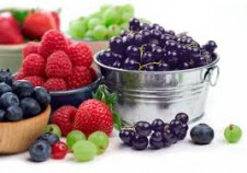 brain food buckets of berries