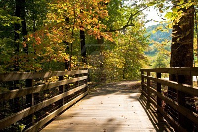 bridge wooden-foot-bridge-in-autumn