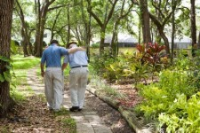 father and adult son walking in park