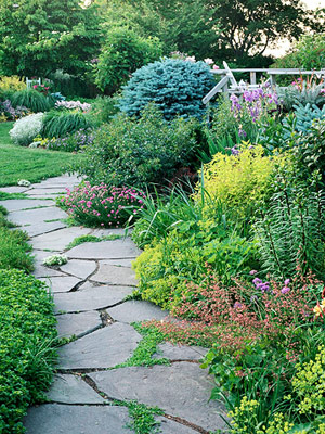 Q a with bernie march 3 2014 bernie siegel m d Types of pathways in landscaping